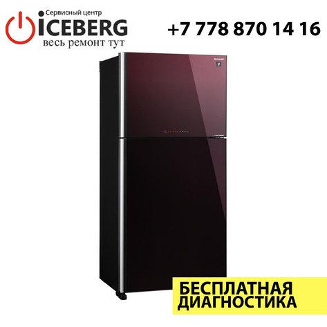 Ремонт холодильников Sharp, фото 2