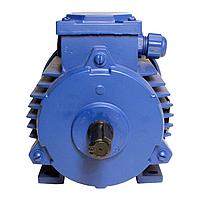 Электродвигатель 4АМ200L2