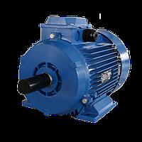 Электродвигатель 5АМН250S6