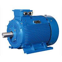 Электродвигатель 2В250М6