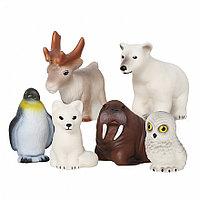 Набор Животные Арктики и Антарктики