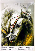 "Картина по номерам "" Лошадь ""40*50 см"