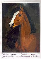"""Картина по номерам """" Лошадь """" 40 х 50 см"""