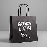 Пакет подарочный «Катись», 22 х 22 х 11 см