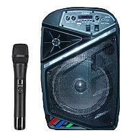 Колонка караоке беспроводная с беспроводным микрофоном Cov-108. В описании есть видео обзор колонки!