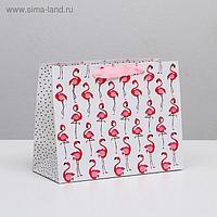 Пакет ламинированный горизонтальный «Фламинго», MS 23 × 18 × 10 см