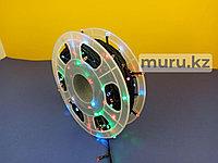 Светодиодная лента Дюралайт, Праздничное освещение, Гирлянда 50м 220V