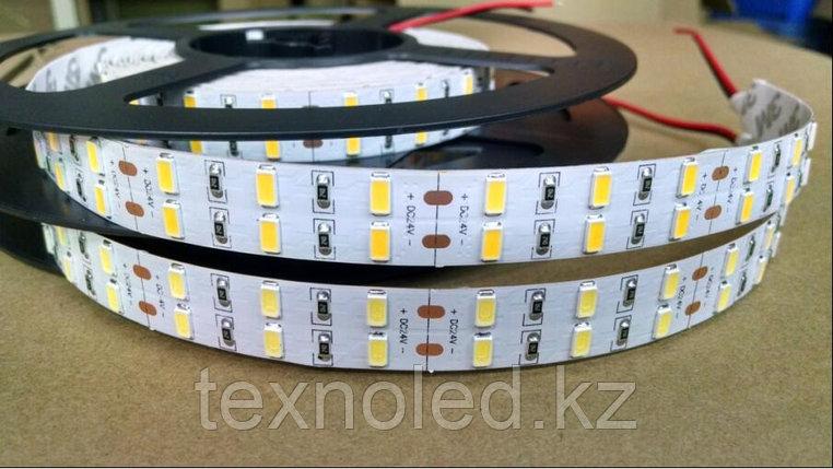 Светодиодная лента SMD 5630/120led 24v ДИОДЫ CREE, фото 2