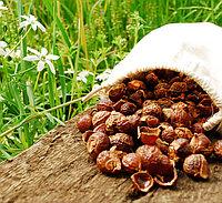 Мыльные орехи 100г