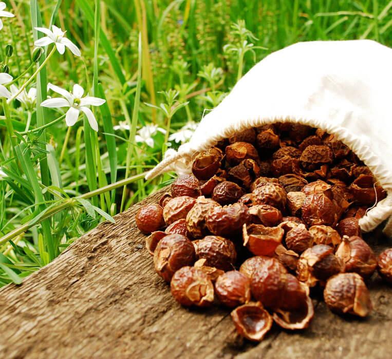 Мыльные орехи 500г