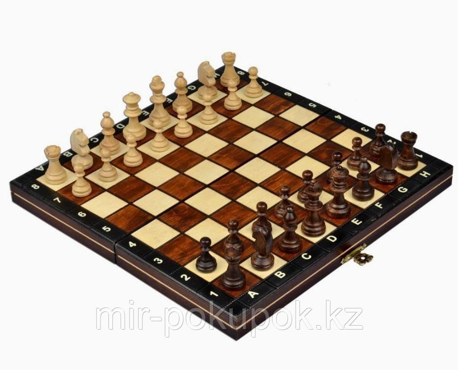 Шахматы (26,5*26,5*2 см)