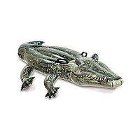 Надувная игрушка Intex 57551NP в форме крокодила для плавания