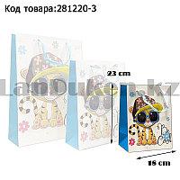 Пакет подарочный S(18х23) 3D иллюстрация для детей с блестками белого цвета с тигренком