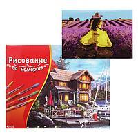 Картина по номерам 40×50 см в коробке, 20 цветов «Девушка в лавандовом поле»