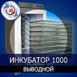 Инкубатор 1000 яиц выводной, фото 3