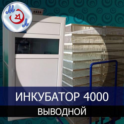 Выводной инкубатор на 4000 яиц