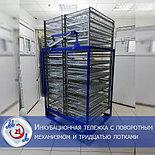 Профессиональный инкубатор автоматический на 8000 яиц   БМИ-Ф-15.430Ф,, фото 8