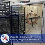 Профессиональный инкубатор автоматический на 8000 яиц   БМИ-Ф-15.430Ф,, фото 9