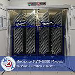 Профессиональный инкубатор автоматический на 8000 яиц   БМИ-Ф-15.430Ф,, фото 10