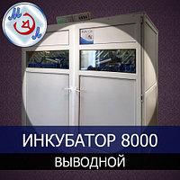 Профессиональный выводной инкубатор на 8000 яиц