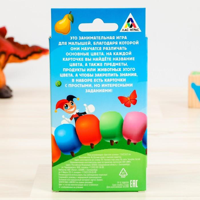 Развивающая игра «Цветная гусенка», 20 карточек 15*8см
