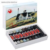Соус художественный, ассорти, 10 цветов, «Подольские товары для художников», в картонной коробке