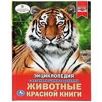 Книга «животные красной книги