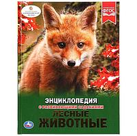 Лесные животные : энциклопедия с развивающими заданиями