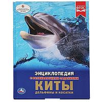 Энциклопедия с развивающими заданиями «Киты, дельфины и косатки»