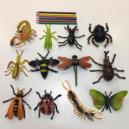 Набор из 12 резиновых насекомых, фото 2
