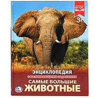 Энциклопедия «большие животные»