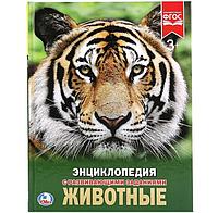 Энциклопедия Животные.