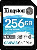Карта памяти SD, Kingston Canvas Go! Plus, 256GB
