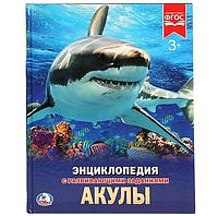 Энциклопедия Акулы.