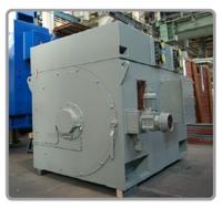 Высоковольтный силовой двигатель VEM для химической и нефтегазовой промышленности, до 25 МВт