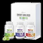 SMART-VMN 2020