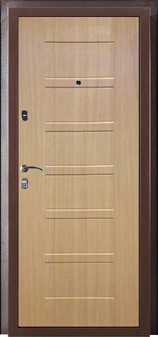 Металлическая дверь ПРАКТИК 5С 2050-880 R/L