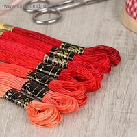 Набор ниток мулине «Цветик-Семицветик», 10 ± 1 м, 7 шт, цвет красный спектр