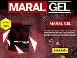 MARAL GEL - гель для увеличения члена, в короткие сроки, фото 4