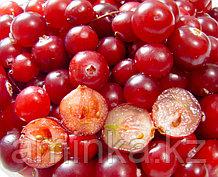 Отдушка для мыла красная ягода, 10 мл
