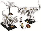 Конструктор Аналог лего Lego Creator 21320, Lari 11449 Кости динозавров, фото 4