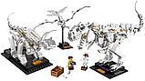 Конструктор Аналог лего Lego Creator 21320, Lari 11449 Кости динозавров, фото 6