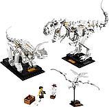 Конструктор Аналог лего Lego Creator 21320, Lari 11449 Кости динозавров, фото 9