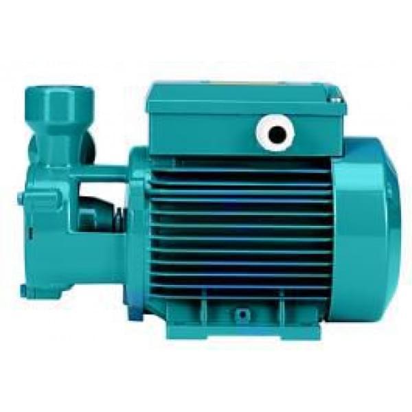 Насосный агрегат вихревого типа TP 80 230/400/50 Hz