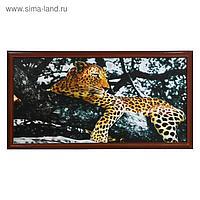 """Картина """"Леопард на дереве"""" 56х106см рамка микс"""