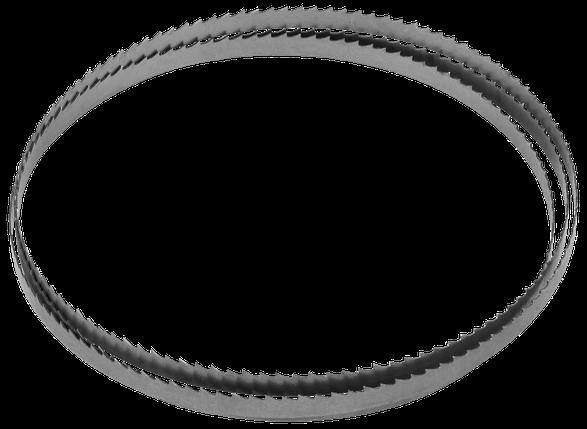 ЗУБР  1425 х 8 х 0,5мм 6TPI полотно ленточное для пилы ЗПЛ-350-190 (155810-190-4), фото 2