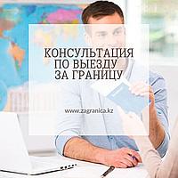 Консультация по типу визы и  документам для получения визы