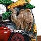 """Фонтан """"Верблюд у воды"""" 13*17*25 см (с подсветкой), фото 2"""