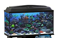 Аквариум GoldFish, прямоугольник 70 литров с белой крышкой