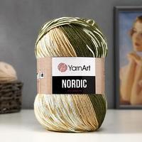 Пряжа 'Nordic' 20 шерсть, 80 акрил 510м/150гр (651)